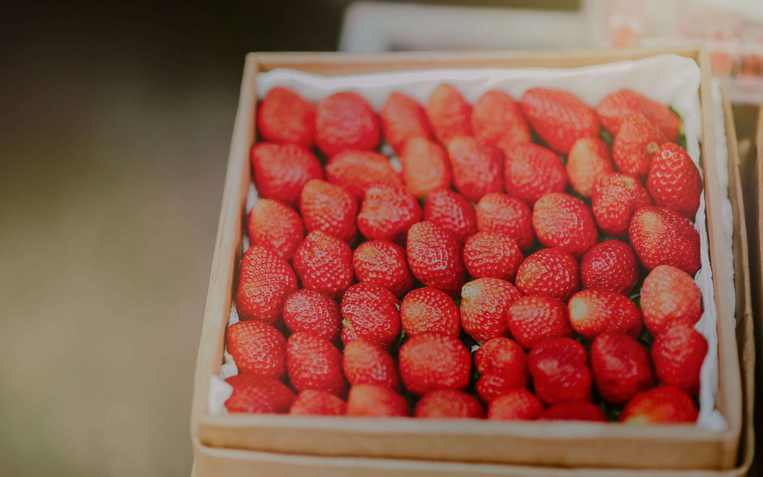 Storing Brad's Strawberries